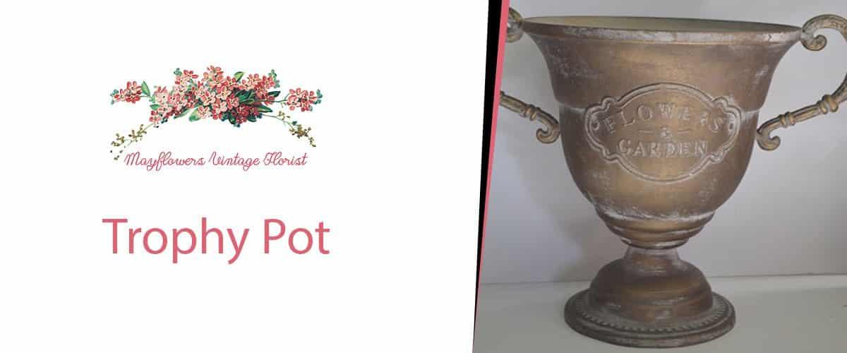 Trophy Pot