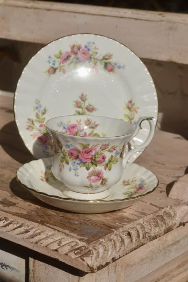 Royal Albert Moss Rose -